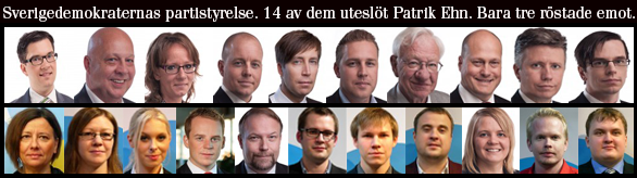 partistyrelsen-sverigedemokraterna